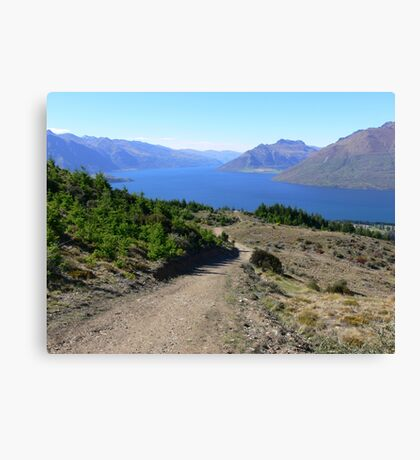 NZ country road Canvas Print