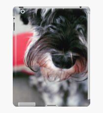 Bilbo II iPad Case/Skin