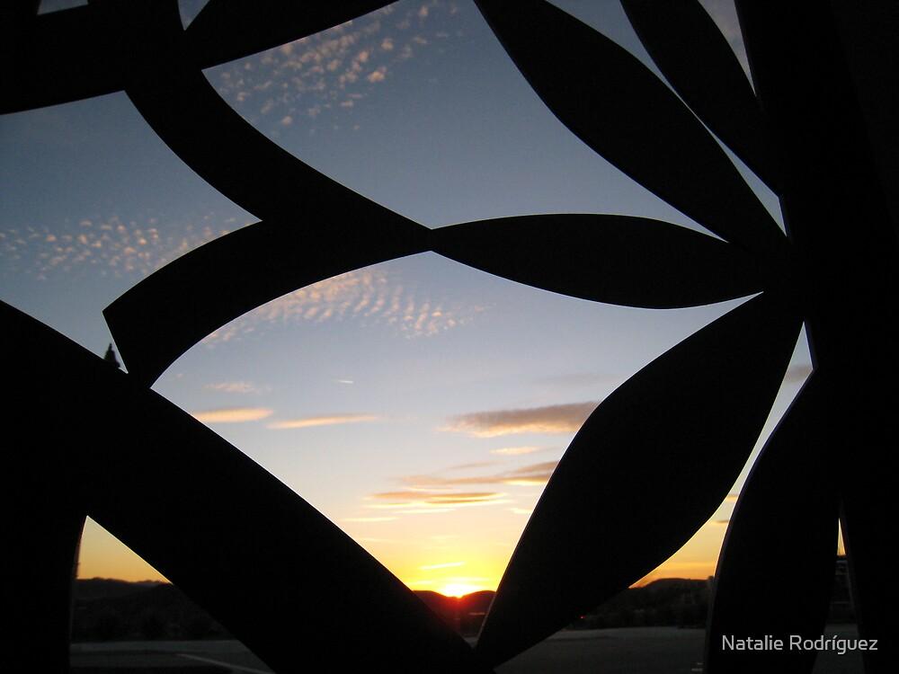 """In My Own Backyard""   by Natalie Rodríguez"