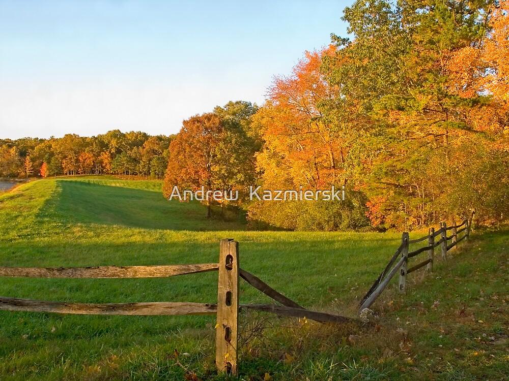 Autumn Fence by andykazie