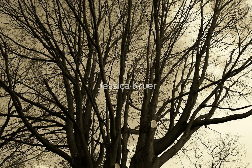 Sepia Tree by Jessica Kruer