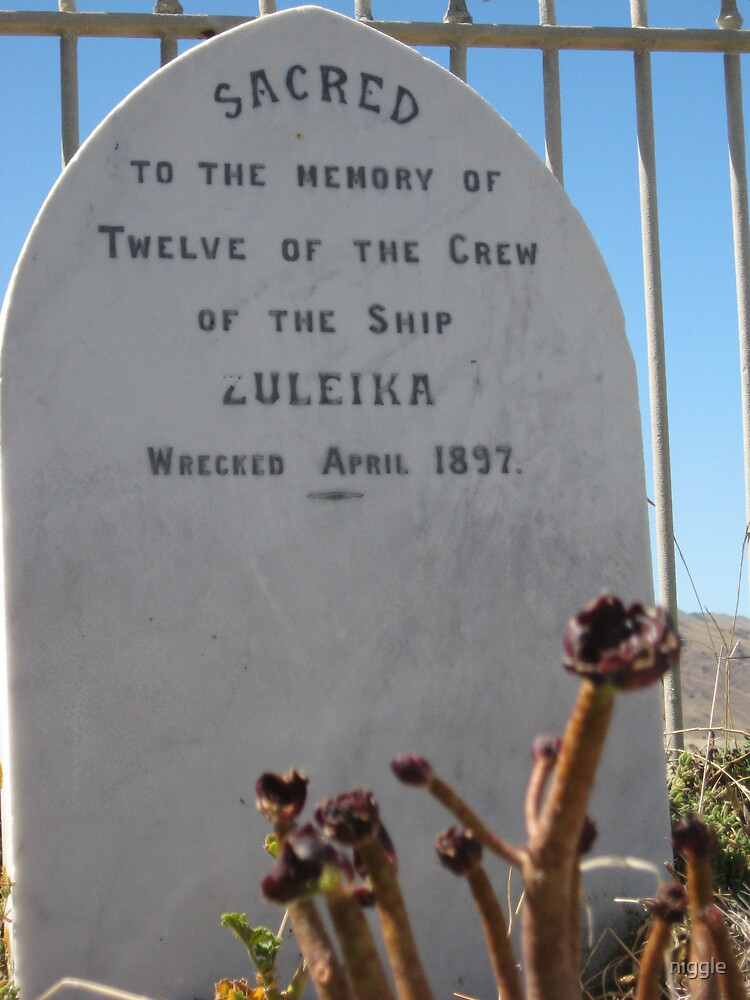 In the Memory of the Zuleika by niggle
