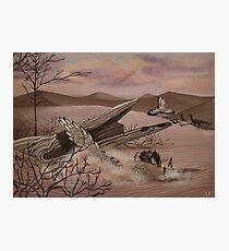 Velociraptor Photographic Print