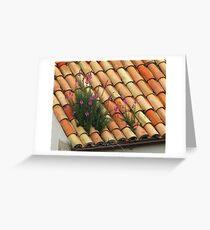 Leeuwenbek ~ Snapdragon ~ Antirrhinum Majus  Greeting Card