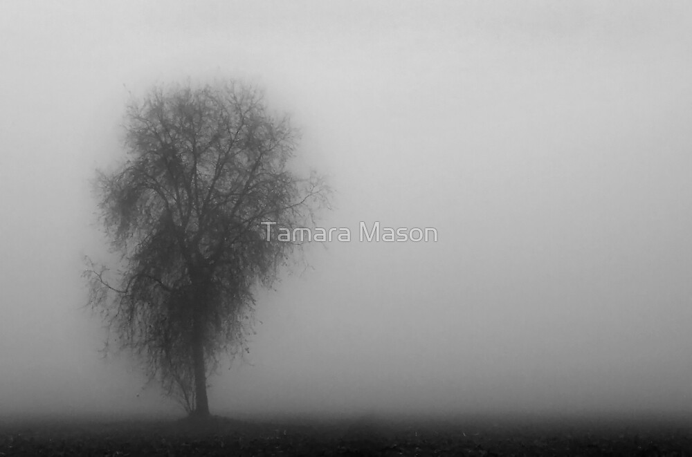 Into the Mist by Tamara Mason