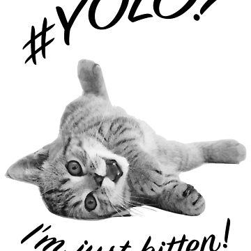 YOLO! I'M JUST KITTEN  by sltPoison