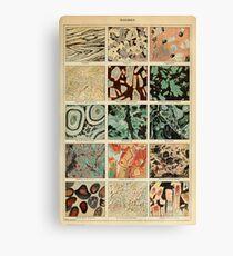 crystals print - geology print Canvas Print