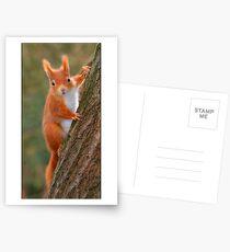 Hi again! Postcards
