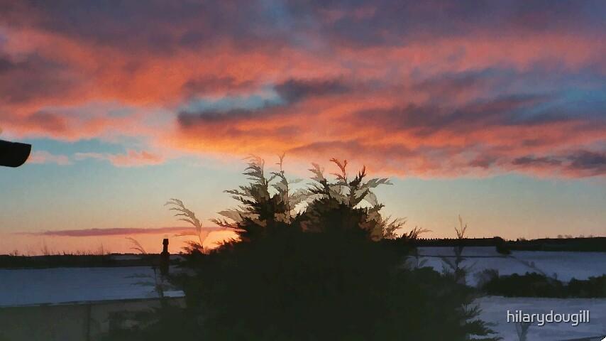 Sunset by hilarydougill