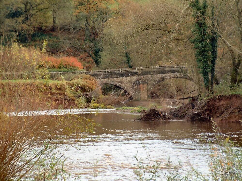 Autumn Bridge by Mischa