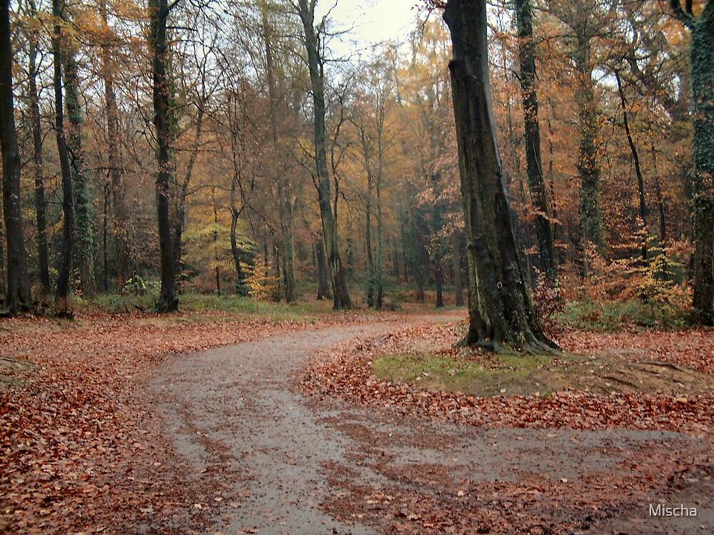 Autumn Forest by Mischa