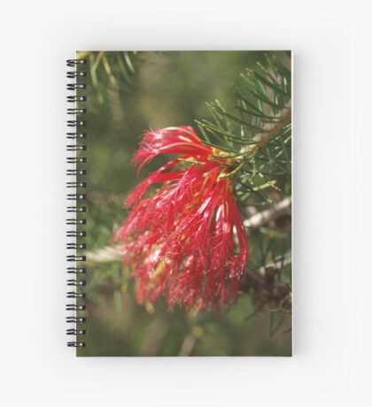Wireless Calothamnus Spiral Notebook