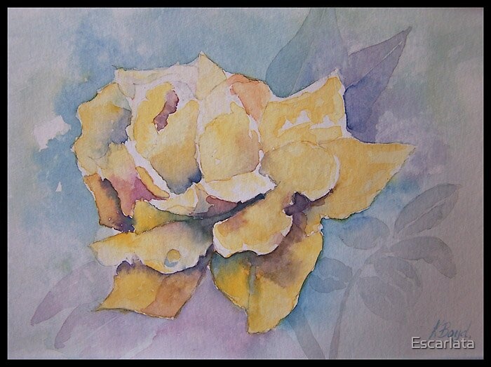 Yellow Rose by Escarlata