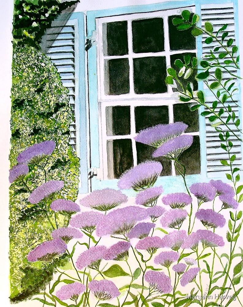 David's Window by Maryann Harvey