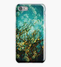 mi regalo para el san jordi iPhone Case/Skin