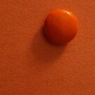 Simply Orange by Stephen Thomas