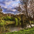 The River Kennet At Burghfield by IanWL