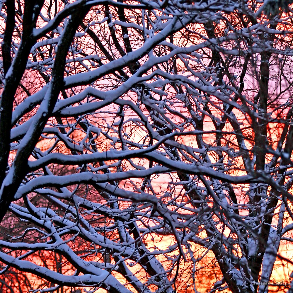 Fire and Ice by James Lady