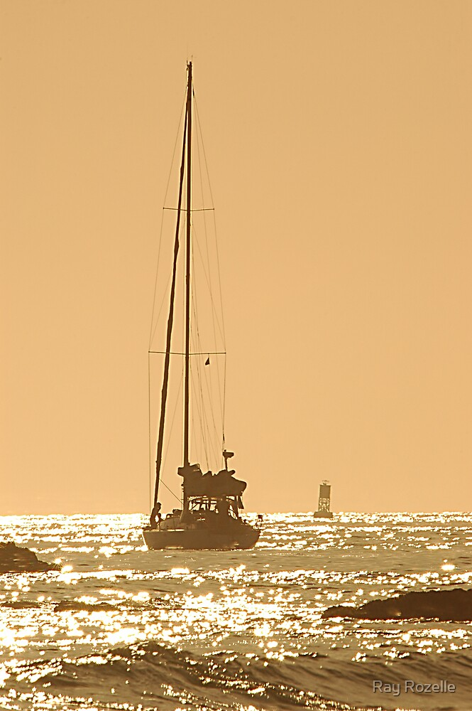 Newport Sailboat by Ray Rozelle