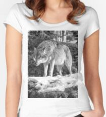 Timber Wolf Winter Menaces Women's Fitted Scoop T-Shirt