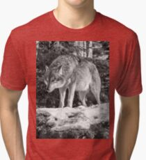 Timber Wolf Winter Menaces Tri-blend T-Shirt