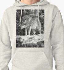 Timber Wolf Winter Menaces Pullover Hoodie