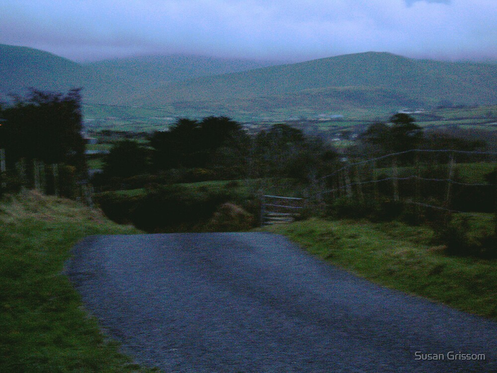 Northern Ireland Road by Susan Grissom