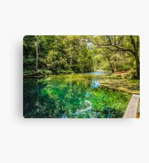 Spring of Color Canvas Print