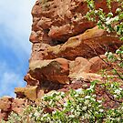 Spring at Red Rocks by Eileen McVey