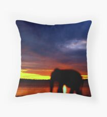 Forced Perspective Throw Pillow