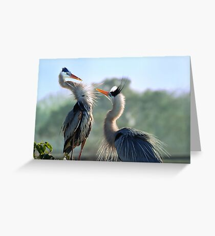 Instinctual Love Greeting Card