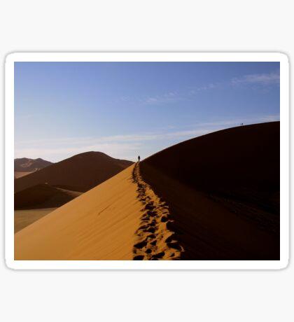 footprints in the Namib Sticker