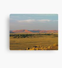 distant sand dunes Canvas Print
