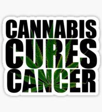 CANNABIS CURES CANCER Sticker