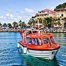 Orange Lifeboats Across Colorful Bay by dbvirago