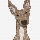 Cute Fawn & White Greyhound by artlovepassion