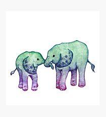 Baby Elephant Love Photographic Print