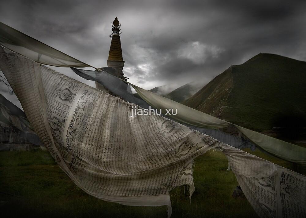 Tibetan Prayer Flag_2897 by jiashu xu