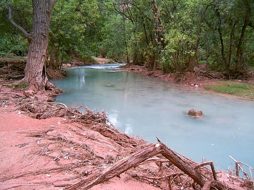 Little River by Hayley Watson