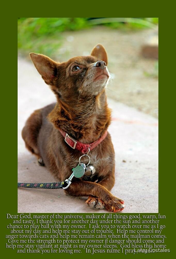 Johnny Canelo Praying - A dogs prayer by Larry Costales