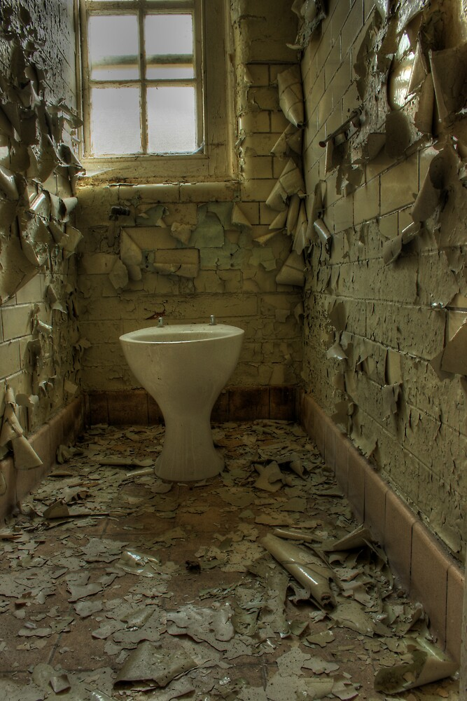 Toilet and flakes by Richard Shepherd