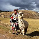A Cash Llama (Not Cow) - Sacsayhuaman, Cusco Province, Peru by Rebel Kreklow