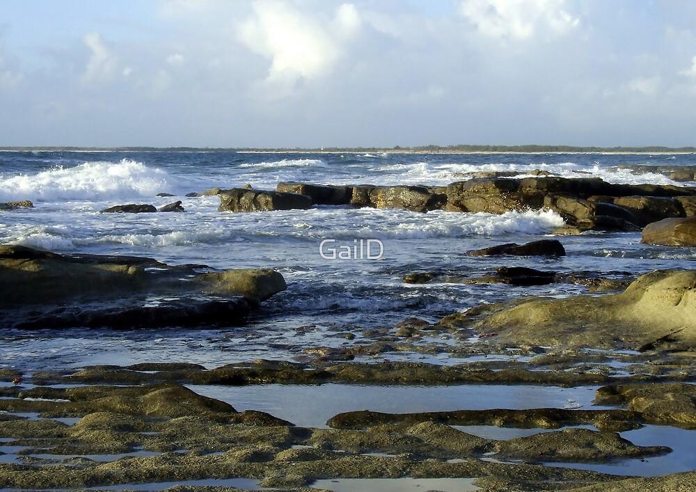 Shelly Beach by GailD