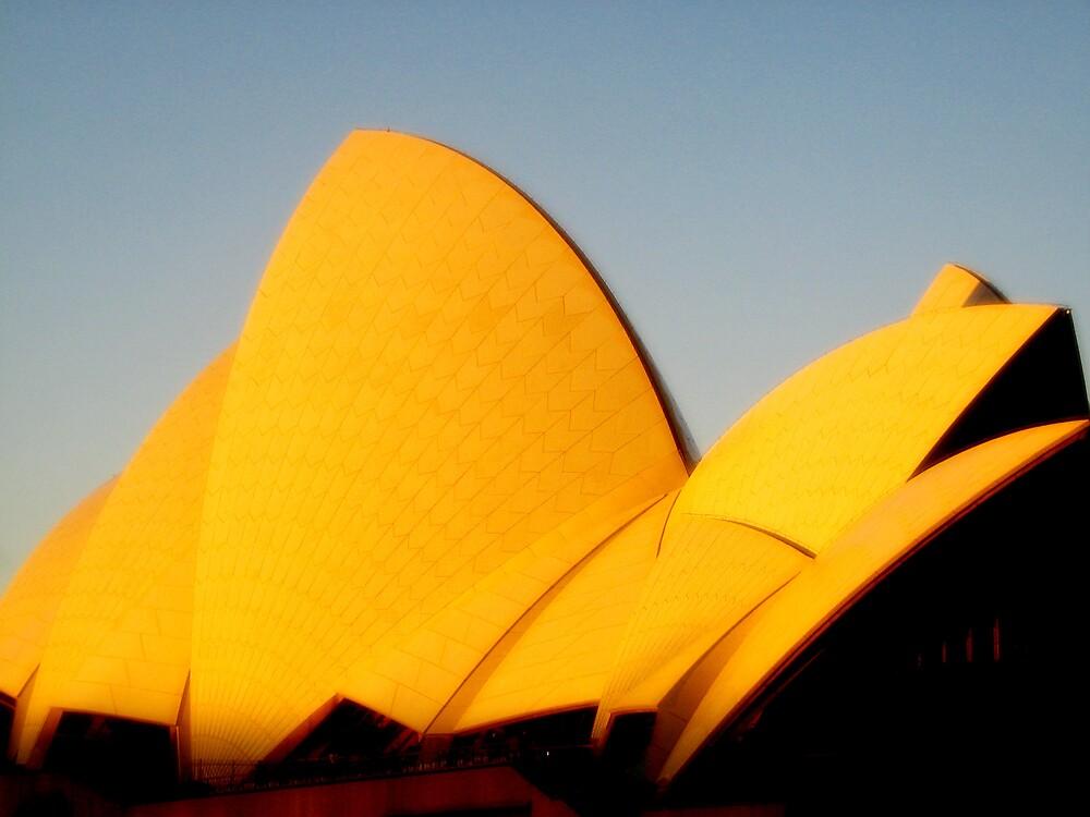 sydney opera house by SherryAnn