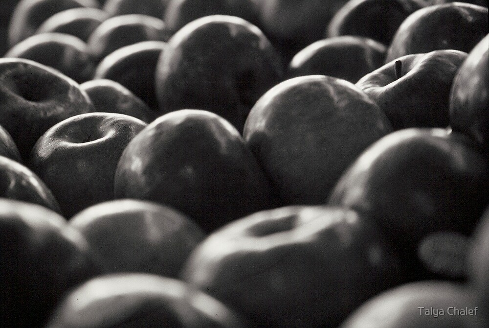 apples by Talya Chalef