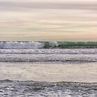 Winter waves at the beach by Roger Porter