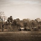 Old Barn on Highway 160 by Patito49