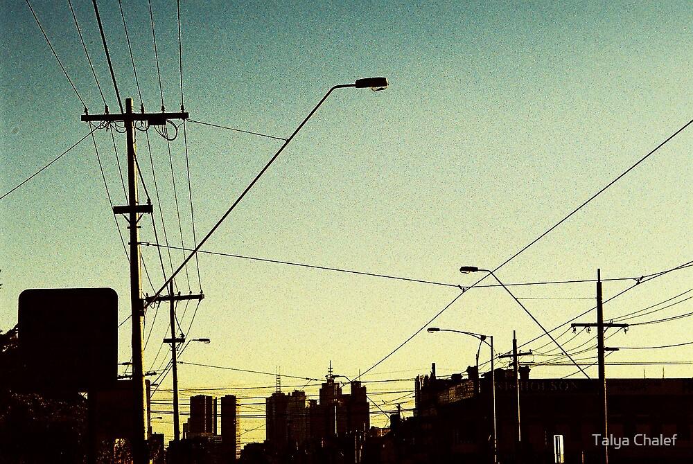 nicholson street at sunset by Talya Chalef