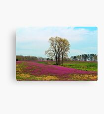 A Colorful Field Canvas Print