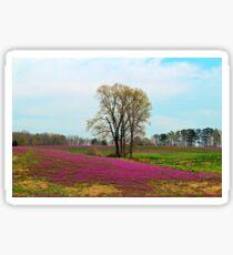 A Colorful Field Sticker